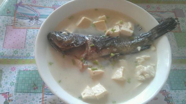黑头鱼炖豆腐的做法