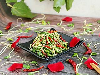 紫绫罗的最轻食的黑豆芽,吃出高级感