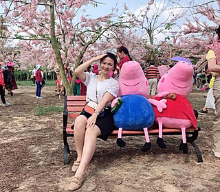 陈c二姐的赏樱花季