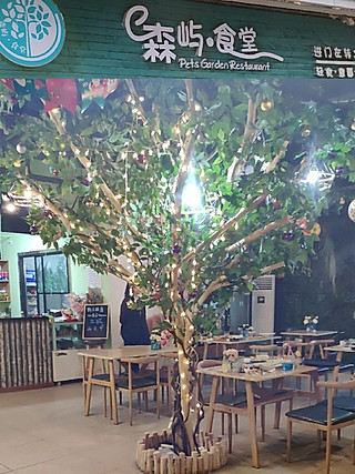 丫头不枫不成魔的#大连探店#藏在都市里的一抹静谧——森屿·食堂
