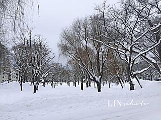 霖的吃货铺的那年,我看过的雪,收获最美的冬天!