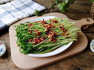 轻食减肥食堂的剁椒凉拌豌豆苗,超级健康又美味!