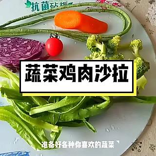 清露风荷的蔬菜鸡肉沙拉