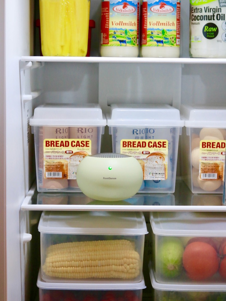 冰箱收纳分享图4