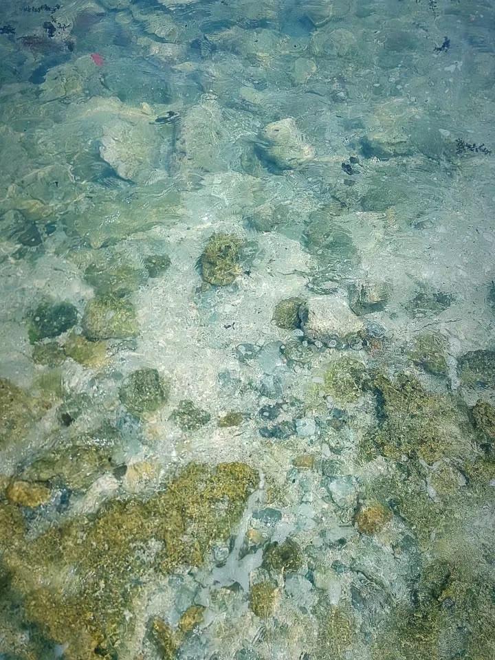三亚的小众海滨远离人潮的白白的后花园图4