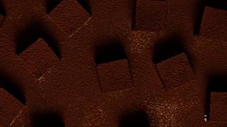 嘿牛牛的蜂蜜百香果生巧克力