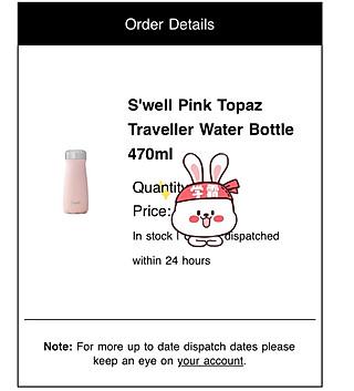 一只菠萝狸fofo的购物分享·Swell保温杯 一年四季多喝热水!