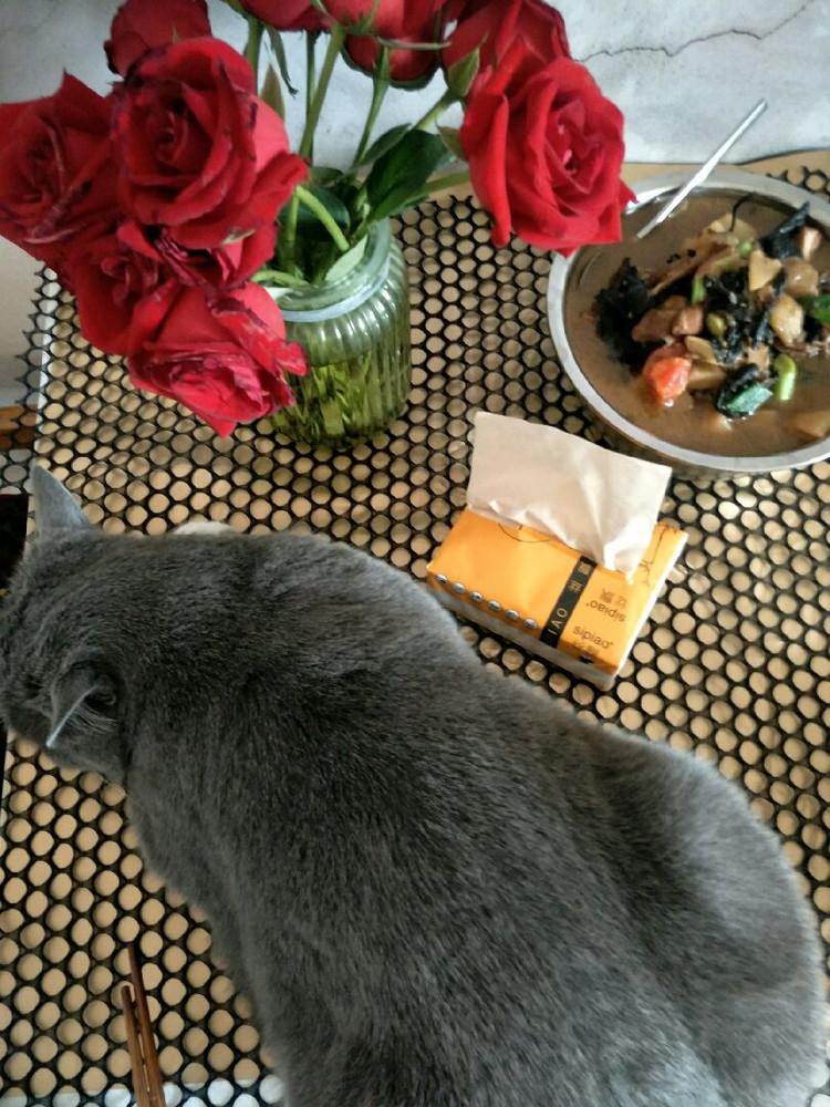 这盘大菜吃了可不好消化😂看的吃饭呀,赶紧上桌桌,先看看,完了就爬下准备睡觉觉😚😚😚图3
