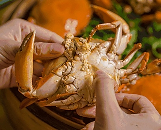 正确的阳澄湖大闸蟹吃法,一学就会!