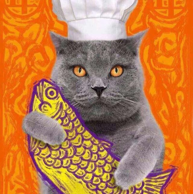 卖糕的猫JANE