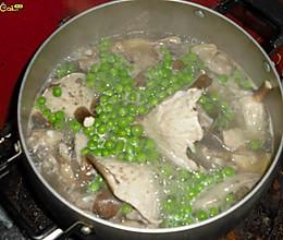 美丽厨娘-猪肚菇青豆炖鸡的做法