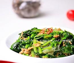 补脑佳肴-虾酱粉丝炒菠菜的做法