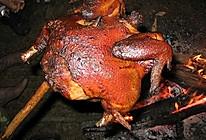美味情缘之户外烤鸡─户外美食的做法