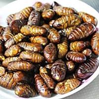 干煸蚕蛹的做法图解6
