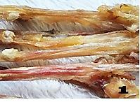 菌菇烩驼筋的做法图解1
