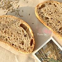 5分钟面包(3)-粗黑麦面包Pumpernickel Bread的做法图解10