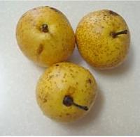 冰糖红枣蒸梨的做法图解1