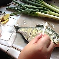 红烧鳊鱼的做法图解5