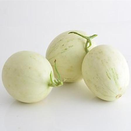 歸田居 丨 山東玉菇甜瓜 5斤