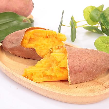 归田居 丨 山东烟薯蜜甜烤型地瓜 5斤