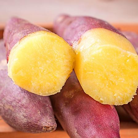 归田居 丨 临安天目小香薯 5斤