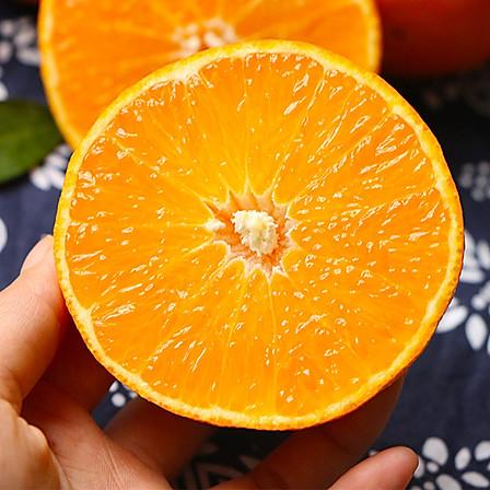 齐鲁荟  爱媛38号果冻橙5斤 9~12个